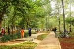 Jogging track diantara pepohonan (photo:oktovinabutarbutar)