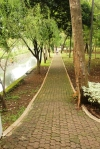 Jogging track (photo: oktovinabutarbutar)